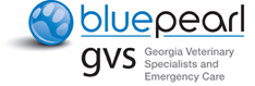 BluePearl Georgia Logo